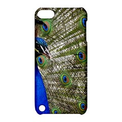 Peacock Apple Ipod Touch 5 Hardshell Case With Stand by Siebenhuehner
