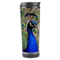 Peacock Travel Tumbler by Siebenhuehner