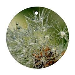 Dandelion Round Ornament (two Sides) by Siebenhuehner