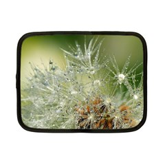 Dandelion Netbook Case (small) by Siebenhuehner