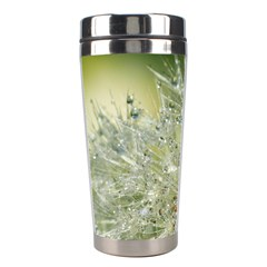 Dandelion Stainless Steel Travel Tumbler by Siebenhuehner