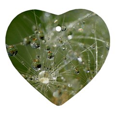 Dandelion Heart Ornament by Siebenhuehner