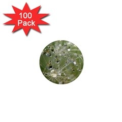Dandelion 1  Mini Button Magnet (100 Pack) by Siebenhuehner