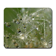 Dandelion Large Mouse Pad (rectangle) by Siebenhuehner