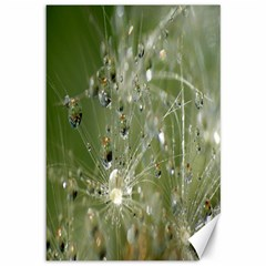 Dandelion Canvas 12  X 18  (unframed) by Siebenhuehner