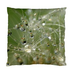 Dandelion Cushion Case (single Sided)  by Siebenhuehner