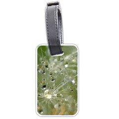 Dandelion Luggage Tag (one Side) by Siebenhuehner