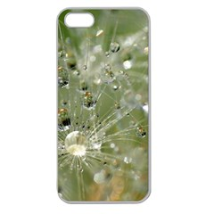 Dandelion Apple Seamless Iphone 5 Case (clear) by Siebenhuehner