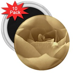 Rose  3  Button Magnet (10 Pack) by Siebenhuehner