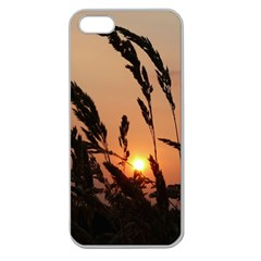 Sunset Apple Seamless Iphone 5 Case (clear) by Siebenhuehner