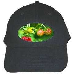 Strawberry  Black Baseball Cap by Siebenhuehner