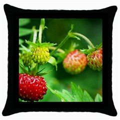 Strawberry  Black Throw Pillow Case by Siebenhuehner