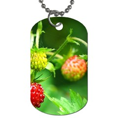 Strawberry  Dog Tag (one Sided) by Siebenhuehner