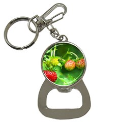 Strawberry  Bottle Opener Key Chain by Siebenhuehner