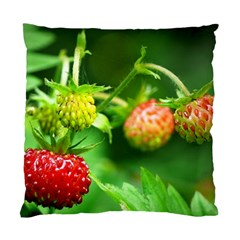 Strawberry  Cushion Case (two Sided)  by Siebenhuehner