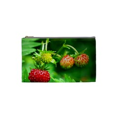Strawberry  Cosmetic Bag (small) by Siebenhuehner