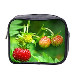 Strawberry  Mini Travel Toiletry Bag (two Sides)