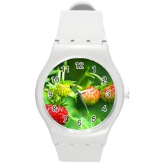 Strawberry  Plastic Sport Watch (medium) by Siebenhuehner