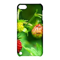 Strawberry  Apple Ipod Touch 5 Hardshell Case With Stand by Siebenhuehner