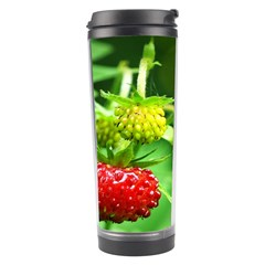 Strawberry  Travel Tumbler by Siebenhuehner
