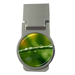 Waterdrops Money Clip (round) by Siebenhuehner