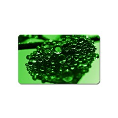 Waterdrops Magnet (name Card) by Siebenhuehner