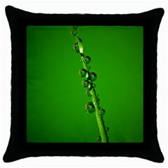 Waterdrops Black Throw Pillow Case by Siebenhuehner