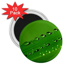 Waterdrops 2 25  Button Magnet (10 Pack) by Siebenhuehner