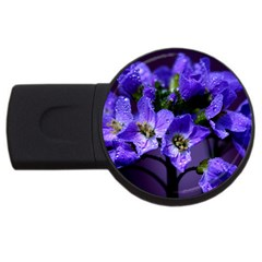 Cuckoo Flower 4gb Usb Flash Drive (round) by Siebenhuehner