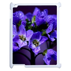 Cuckoo Flower Apple Ipad 2 Case (white) by Siebenhuehner