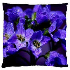Cuckoo Flower Large Cushion Case (two Sided)  by Siebenhuehner