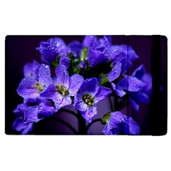Cuckoo Flower Apple Ipad 3/4 Flip Case by Siebenhuehner
