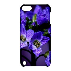 Cuckoo Flower Apple Ipod Touch 5 Hardshell Case With Stand by Siebenhuehner