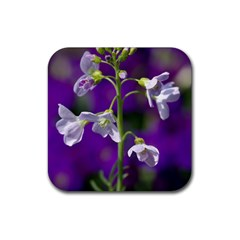 Cuckoo Flower Drink Coasters 4 Pack (square) by Siebenhuehner