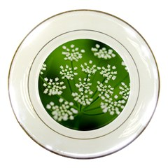 Queen Anne s Lace Porcelain Display Plate by Siebenhuehner