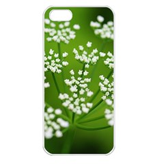 Queen Anne s Lace Apple Iphone 5 Seamless Case (white) by Siebenhuehner