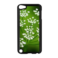 Queen Anne s Lace Apple Ipod Touch 5 Case (black) by Siebenhuehner