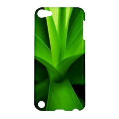 Yucca Palm  Apple Ipod Touch 5 Hardshell Case by Siebenhuehner