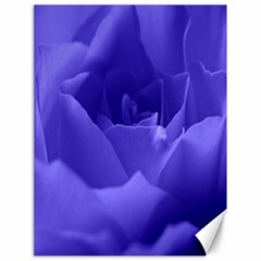 Rose Canvas 18  X 24  (unframed) by Siebenhuehner
