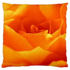 Rose Large Cushion Case (single Sided)  by Siebenhuehner