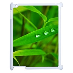 Bamboo Leaf With Drops Apple Ipad 2 Case (white) by Siebenhuehner