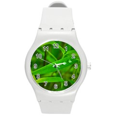Bamboo Leaf With Drops Plastic Sport Watch (medium) by Siebenhuehner