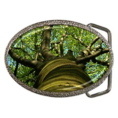 Tree Belt Buckle (oval) by Siebenhuehner