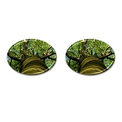 Tree Cufflinks (oval) by Siebenhuehner