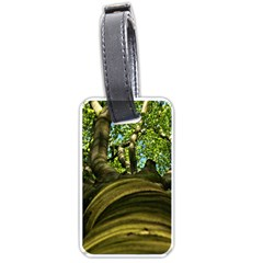 Tree Luggage Tag (two Sides) by Siebenhuehner