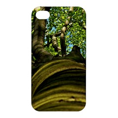 Tree Apple Iphone 4/4s Hardshell Case by Siebenhuehner