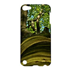 Tree Apple Ipod Touch 5 Hardshell Case by Siebenhuehner