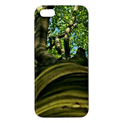 Tree Iphone 5 Premium Hardshell Case by Siebenhuehner