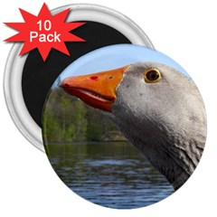 Geese 3  Button Magnet (10 Pack) by Siebenhuehner