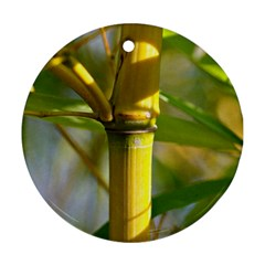 Bamboo Round Ornament by Siebenhuehner